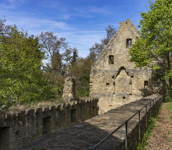 Kloster Disibodenberg heute